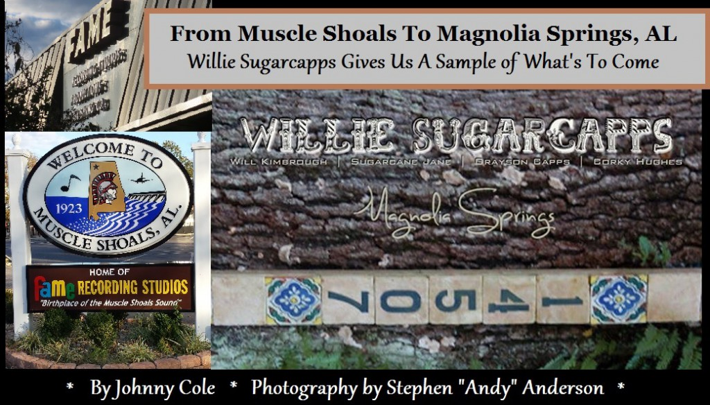 Magnolia Springs Heading