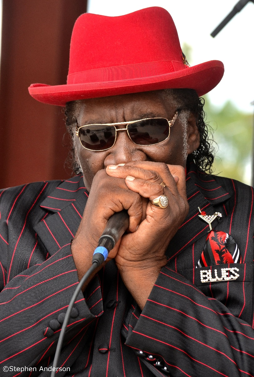 Big George Brock at Bogalusa Blues Festival 2014