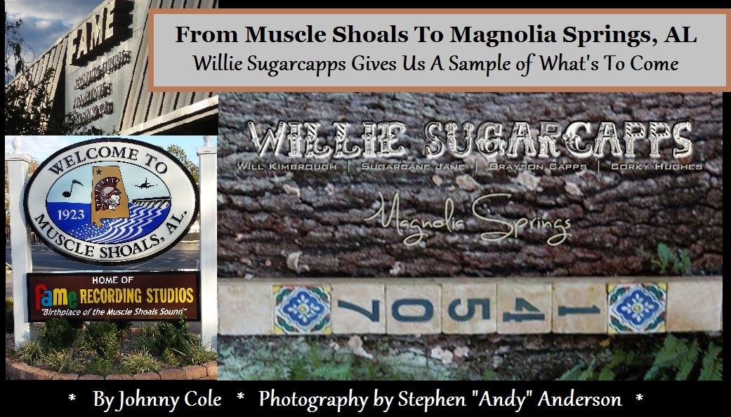 Willie Sugarcapps - Magnolia Springs EP
